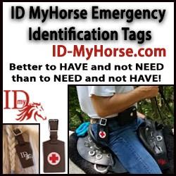 ID-MyHorse-250.jpg